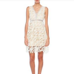 NWT ivory lace dress
